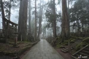 Mt Koya